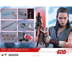Hot Toys 1/6 Star Wars MMS446 Rey Jedi Training