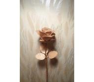 Роза из Кедра